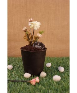ZOROY Eggless Flower Pot Cake | Belgian Chocolate Truffle cake | Small | Pot height 6 inches height approx